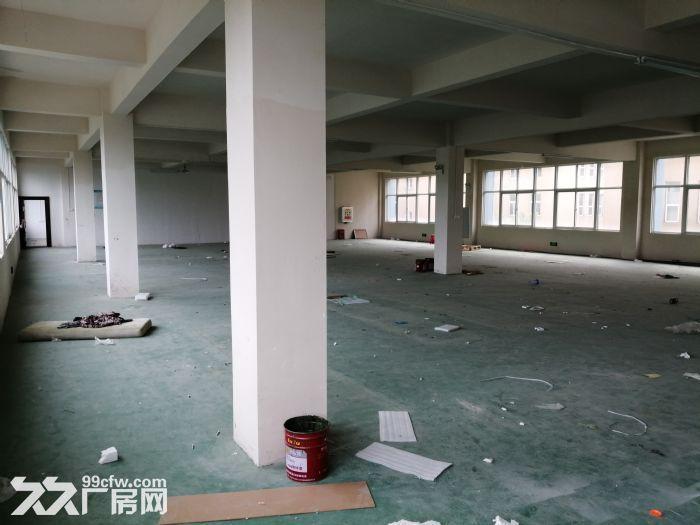 东西湖艾迪克斯工业园4楼750平低价出租-图(3)