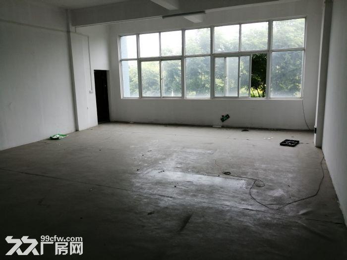 东西湖艾迪克斯工业园4楼750平低价出租-图(5)