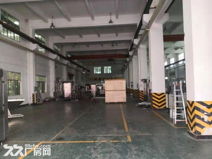 靓哦!新华工业区7米高一楼1550平米精装修厂房出租-图(1)