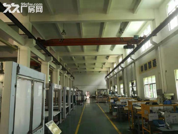 靓哦!新华工业区7米高一楼1550平米精装修厂房出租-图(2)