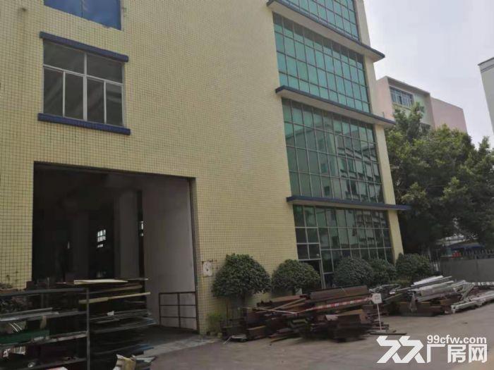 靓哦!新华工业区7米高一楼1550平米精装修厂房出租-图(4)