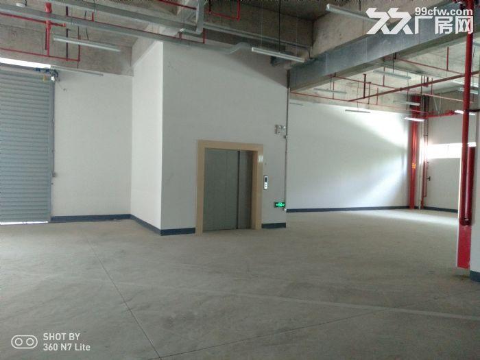 花桥独院9998平米厂房出租有18亩空地-图(1)