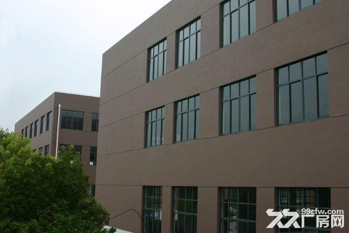 出租厂房上海松江区泗泾开发区104板块标准厂房三层12600平方证齐全-图(6)