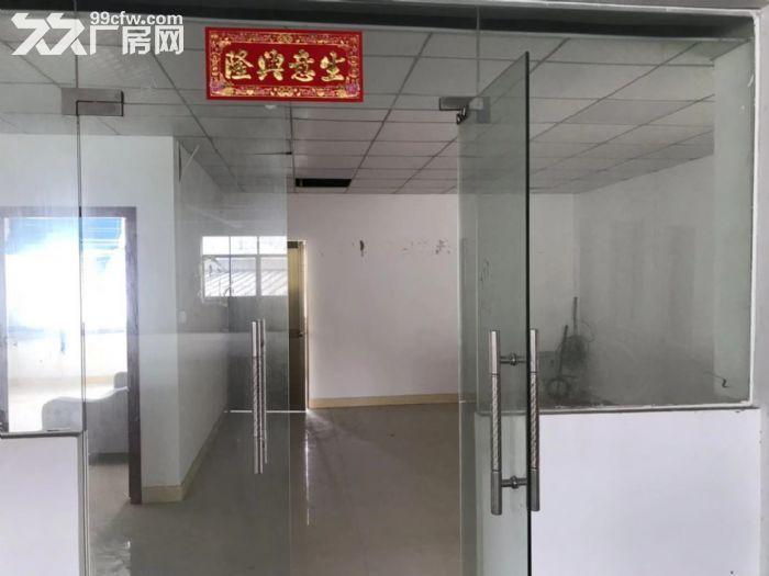 (一手出租)近地铁4号线,能办环评,租金优惠,黄阁2200方-图(5)