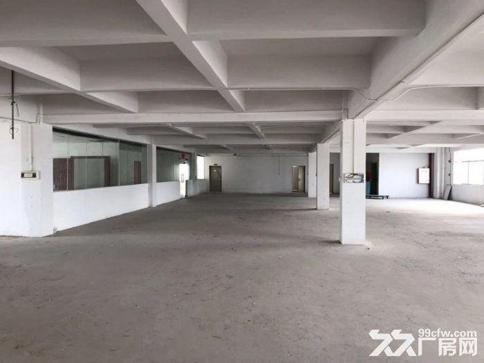 (一手出租)近地铁4号线,能办环评,租金优惠,黄阁2200方-图(4)