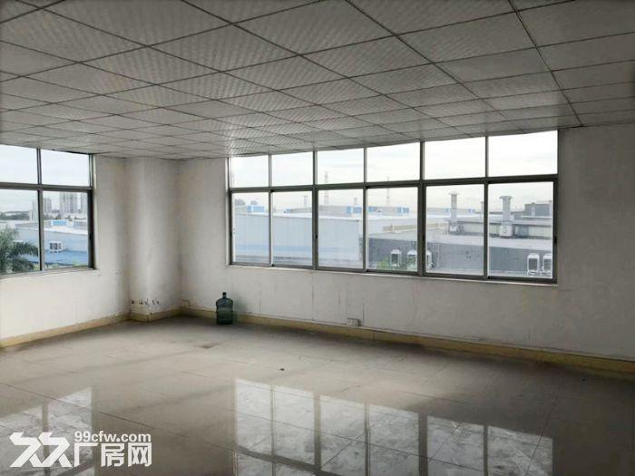(一手出租)近地铁4号线,能办环评,租金优惠,黄阁2200方-图(7)