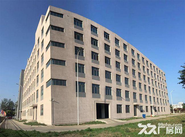 23000平方米工业地产口岸物业资产出售投资项目TJ-图(2)