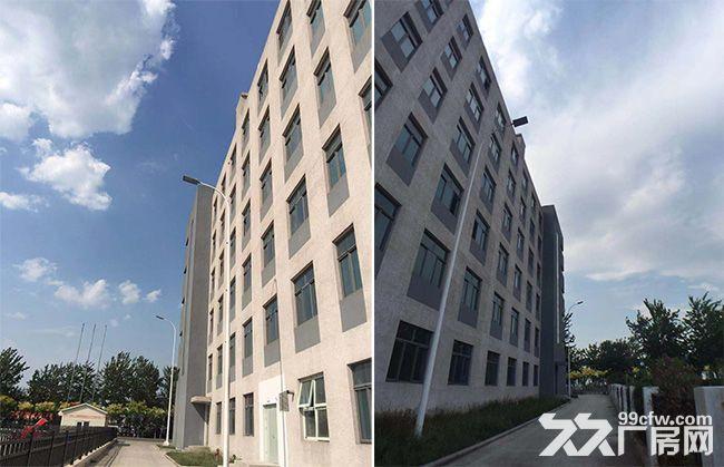 23000平方米工业地产口岸物业资产出售投资项目TJ-图(1)