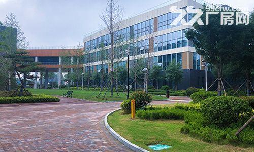潍坊滨海新区工业产业园厂房出租,政策优惠,价格优惠-图(5)