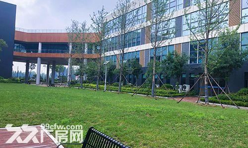 潍坊滨海新区工业产业园厂房出租,政策优惠,价格优惠-图(6)