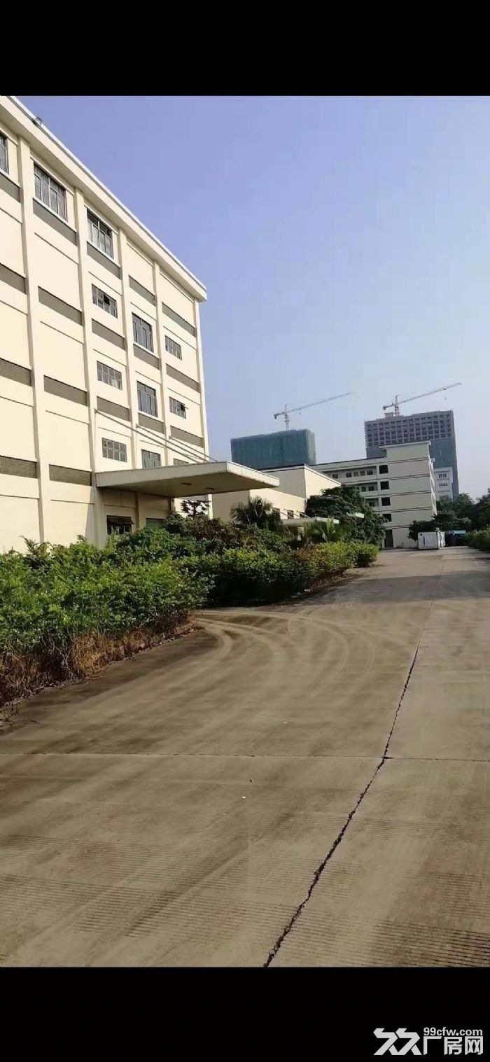 惠东白花镇独门独院红本49000平11米钢构大小可分租-图(5)