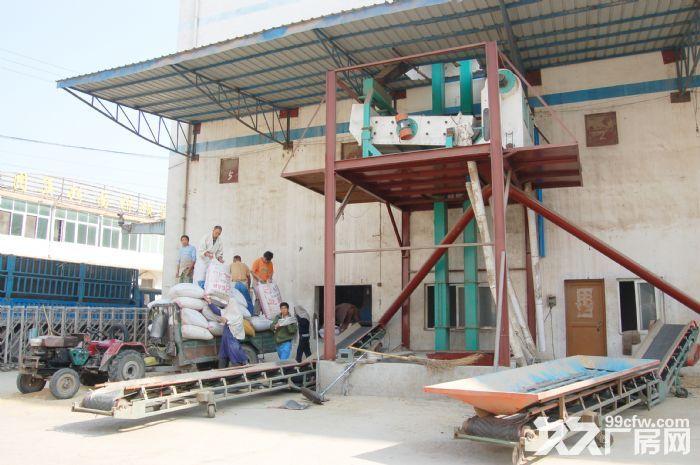 400吨自动化小麦粉加工厂整体出租或出售-图(2)
