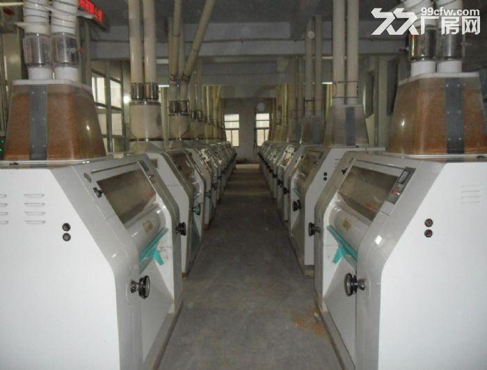 400吨自动化小麦粉加工厂整体出租或出售-图(4)