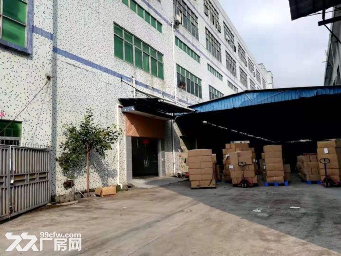 出租清溪三中一楼高6.5米精装修办公室厂房2600平-图(2)