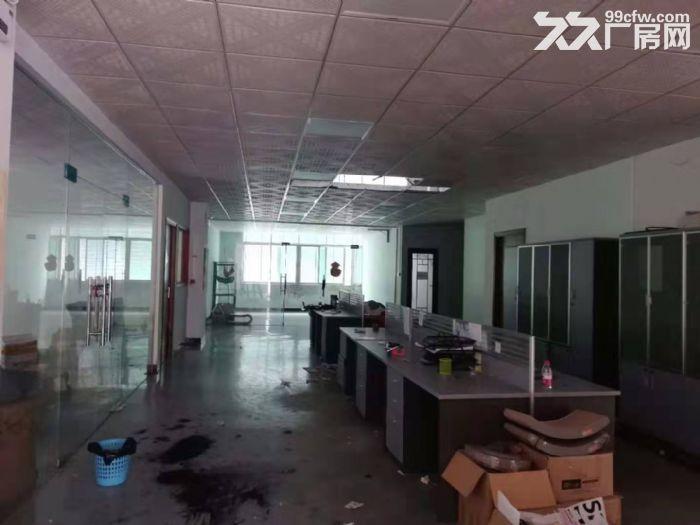 出租清溪三中一楼高6.5米精装修办公室厂房2600平-图(3)