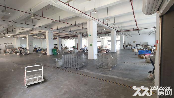 拱墅区三墩总面积950平方厂房出租-图(3)