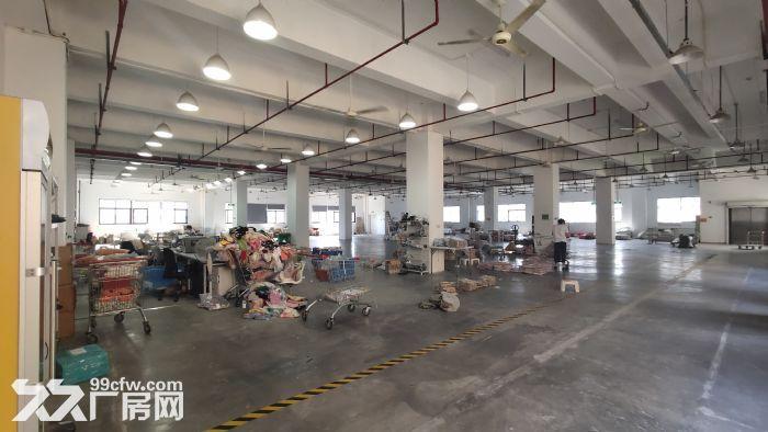 拱墅区三墩总面积950平方厂房出租-图(4)