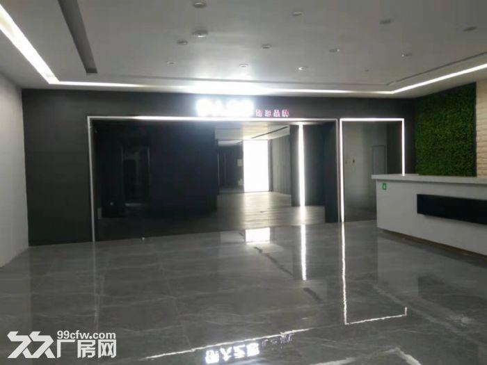 龙江镇沙富工业区1000方首层展厅仓库出租-图(2)