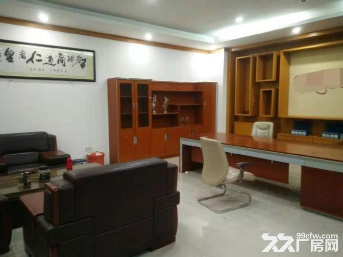 龙江镇沙富工业区1000方首层展厅仓库出租-图(7)
