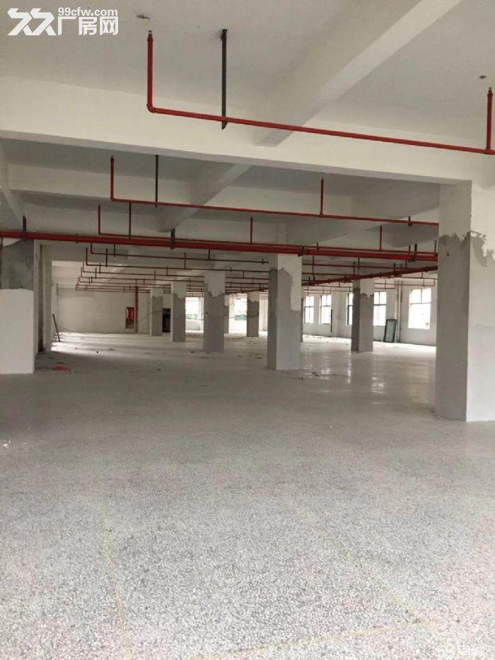 低田工业区独幢1楼2楼各2200平分租-图(1)