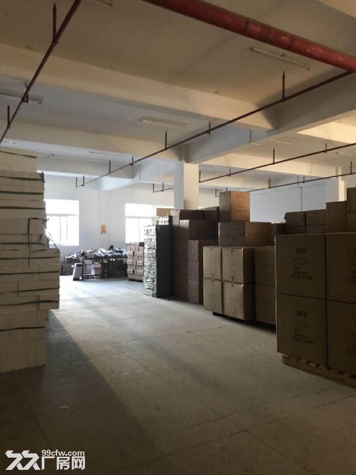 低田工业区独幢1楼2楼各2200平分租-图(2)