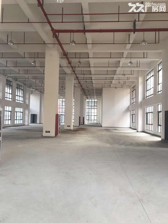 松江新建厂房出租500平双开门电梯园区形象好-图(1)