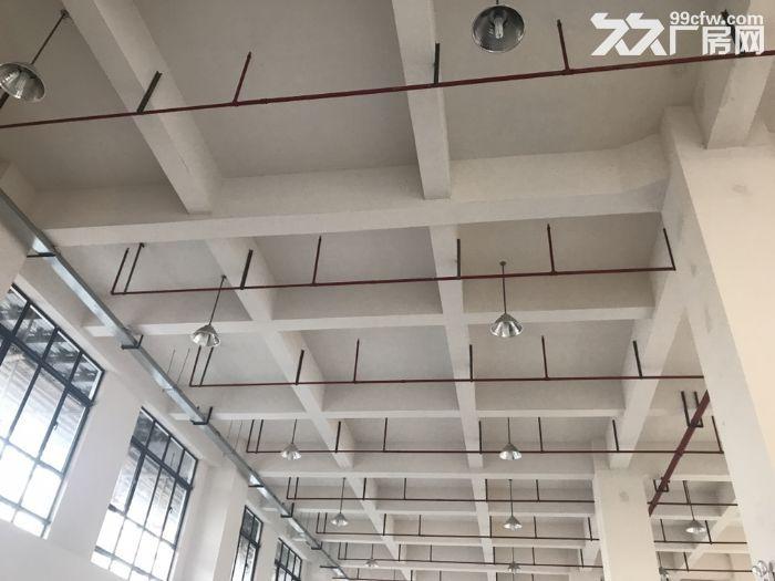 松江新建厂房出租500平双开门电梯园区形象好-图(3)