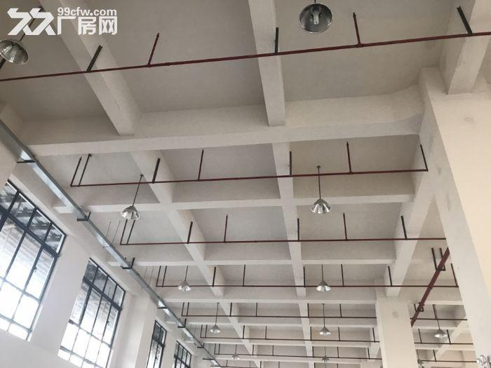 松江车墩工业区1100平104地块适合电子组装办公研发等-图(2)