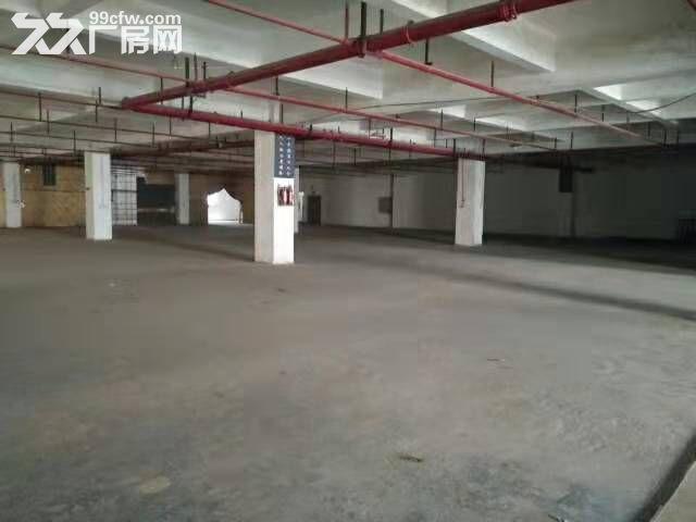 顺德龙江镇龙首大道1800方三楼标准厂房出租-图(4)