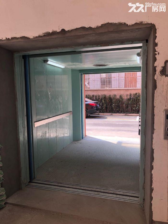松江新建厂房出租500平双开门电梯园区形象好-图(5)