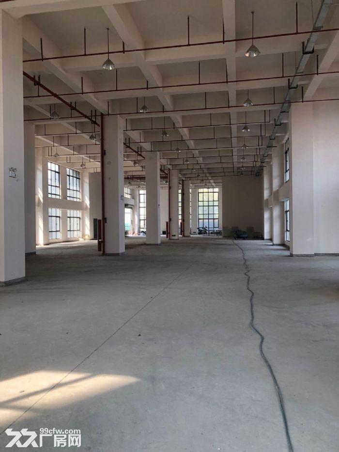 松江新建厂房出租500平双开门电梯园区形象好-图(6)