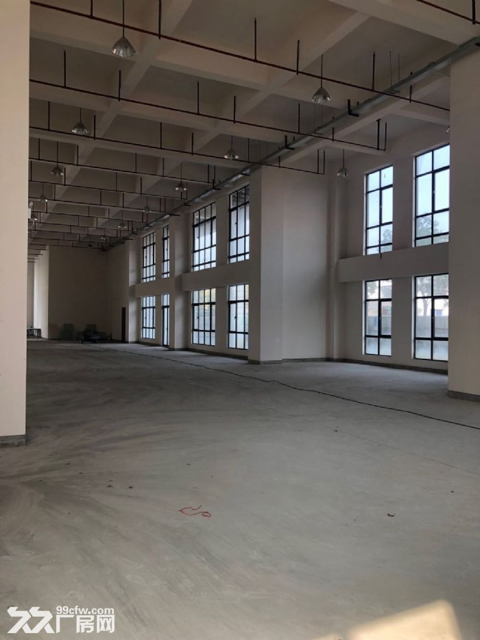 松江新建厂房出租500平双开门电梯园区形象好-图(7)
