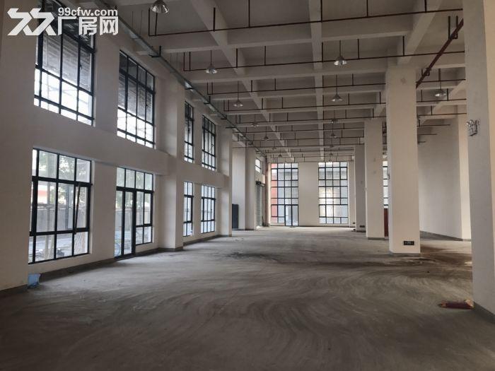 松江车墩工业区1100平104地块适合电子组装办公研发等-图(3)