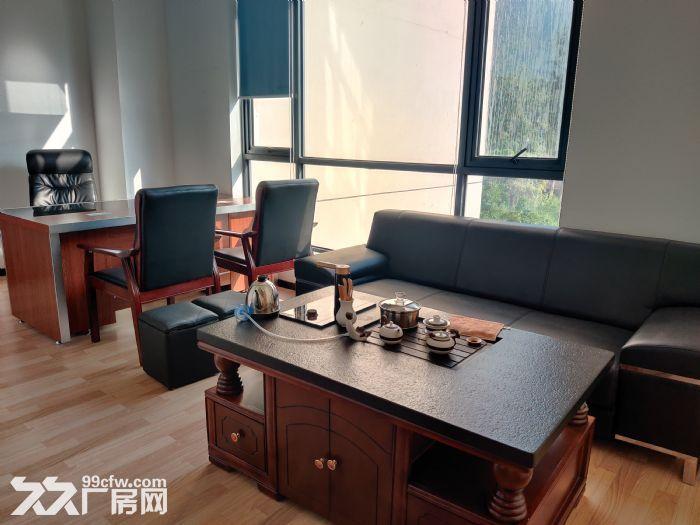 南山西丽塘朗地铁站附近152平精装办公室出租!-图(3)