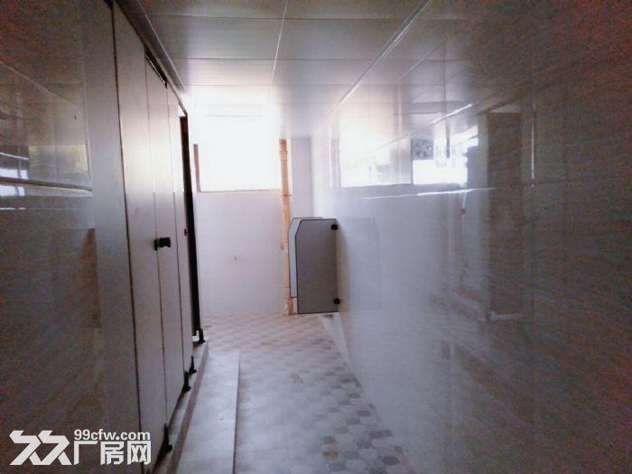 南屏科技园屏东一楼2700平方,全新装修,可分租-图(3)