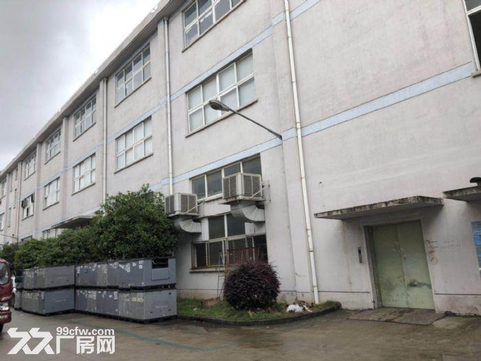 上海浦东航头森普工业园,办公装修全新,设施具全。-图(2)