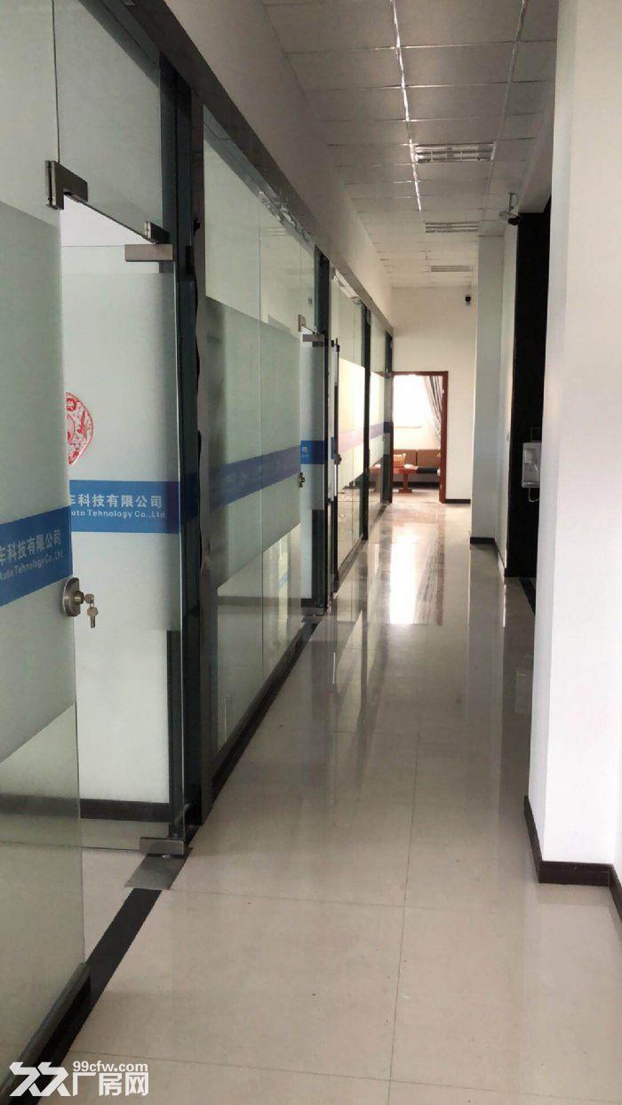 上海浦东航头森普工业园,办公装修全新,设施具全。-图(3)