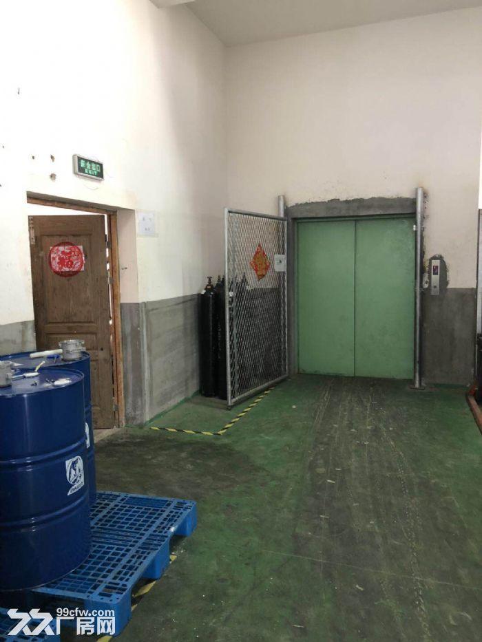 上海浦东航头森普工业园,办公装修全新,设施具全。-图(4)