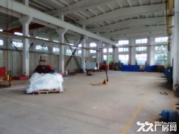 奉贤区上海化学工业区S4高速出口厂房出租-图(5)