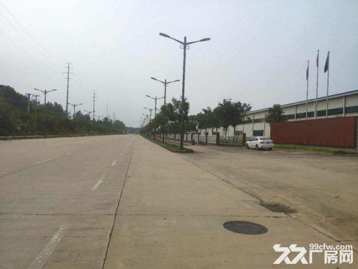武汉蔡甸常福100−15000厂房仓储托管配送代发货-图(1)
