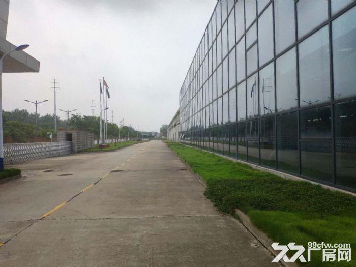 武汉蔡甸常福100−15000厂房仓储托管配送代发货-图(3)