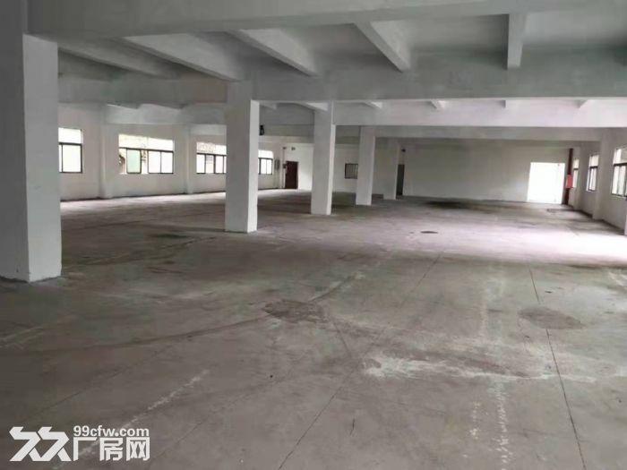 深圳市龙华观澜花园式独院厂房出租空地超大公摊小-图(3)
