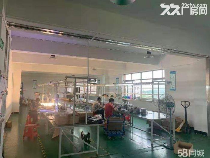 新会区睦洲工业区新出楼上800方标准厂房精装修带办公室-图(1)