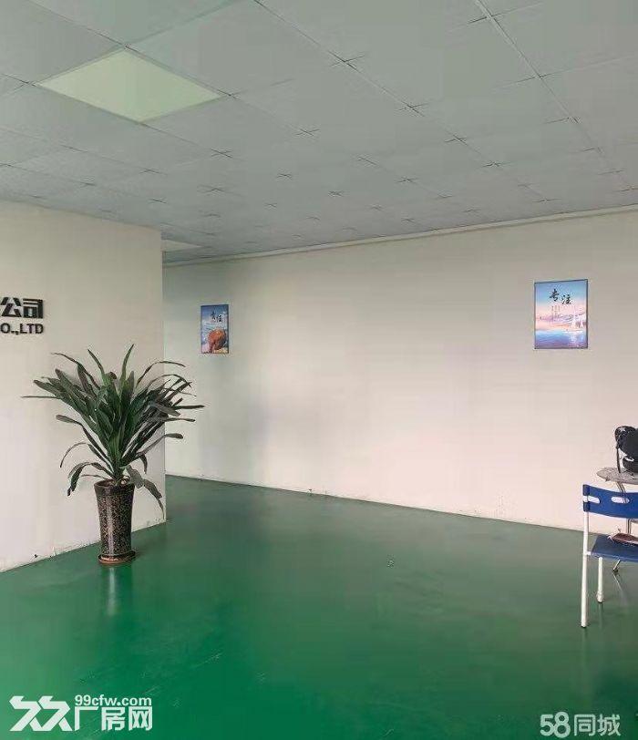 新会区睦洲工业区新出楼上800方标准厂房精装修带办公室-图(3)