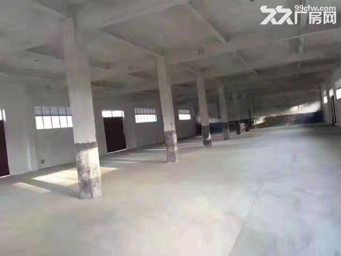 龙岗平湖华南城旁5000平单一层厂房出租,可分租。-图(2)