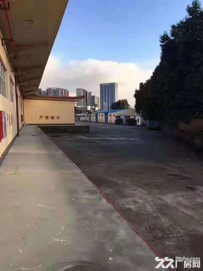 龙岗平湖华南城旁5000平单一层厂房出租,可分租。-图(1)