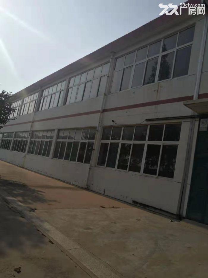 海阳辛安工业园厂房整栋出租2500平米-图(3)