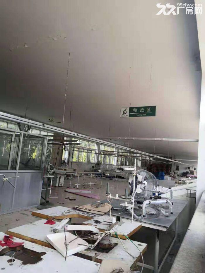 海阳辛安工业园厂房整栋出租2500平米-图(2)