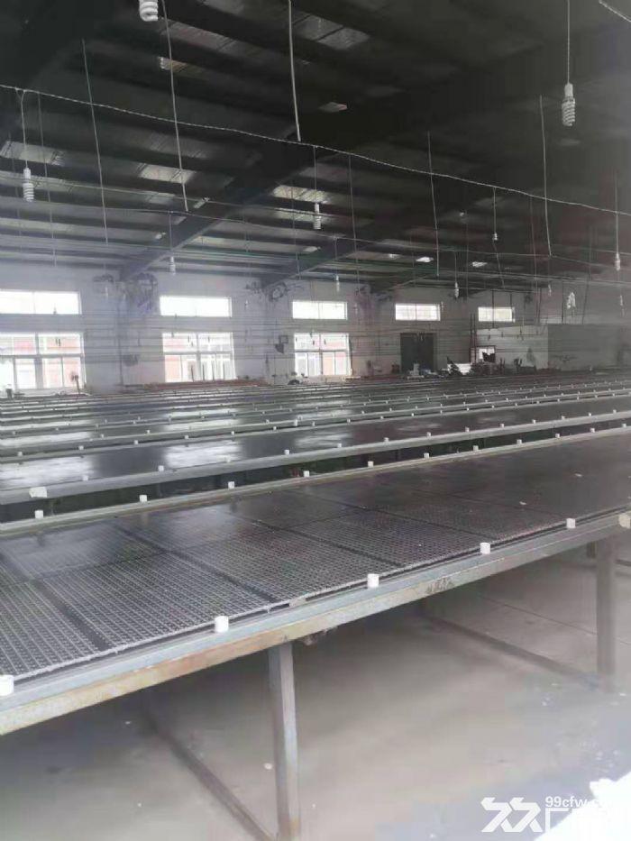 海阳辛安工业园厂房整栋出租1010平米-图(1)