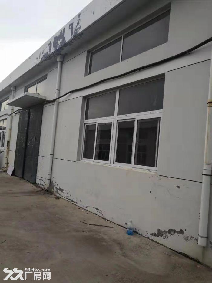 海阳辛安工业园厂房整栋出租1010平米-图(2)